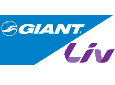 Logo Giant Live Store